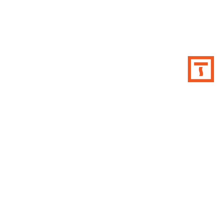 the-indiesoul